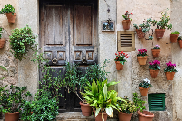 Plants in pots in front of the house Add to the look Refreshing